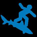 np_shark-surfing_18738_0066AF